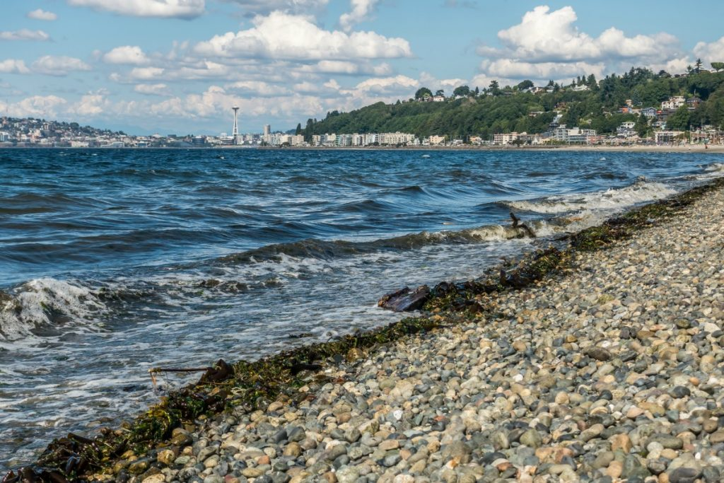Things to Do in West Seattle, Washington